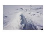 DSC01011 Фотограф: vikirin  Просмотров: 580 Комментариев: 0