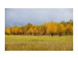 Пейзаж Тымовского района Фотограф: В.Дейкин  Просмотров: 1345 Комментариев: 1