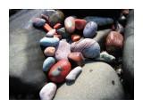 Здесь , как нигде больше вот такая разноцветная галька... Фотограф: vikirin  Просмотров: 3922 Комментариев: 2