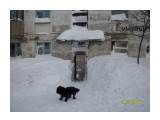 А во дворе-то снегу!....  Просмотров: 5800 Комментариев: