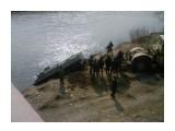 24 мая 2008 мост Лютога 1  Просмотров: 850 Комментариев: