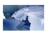 Морской лед Фотограф: vikirin  Просмотров: 1582 Комментариев: 0
