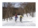 Название: дорога на перевал 4.03.10 Фотоальбом: velo Категория: Спорт  Просмотров: 942 Комментариев: 0