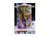 Ледяная картина.  Просмотров: 243 Комментариев: 0