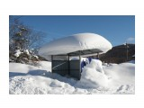 Снегом завалило  Просмотров: 1073 Комментариев: 0