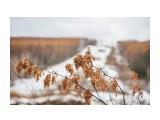 Название: DSC00871 Фотоальбом: Осень Категория: Пейзаж Фотограф: VictorV  Время съемки/редактирования: 2019:11:16 21:10:46 Фотокамера: SONY - SLT-A99 Диафрагма: f/3.5 Выдержка: 1/320 Фокусное расстояние: 500/10    Просмотров: 19 Комментариев: 0