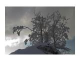 Название: IMG_8718 Фотоальбом: 2012.12.08 Горный воздух Категория: Природа  Время съемки/редактирования: 2012:12:09 23:12:04 Фотокамера: Canon - Canon EOS 7D Диафрагма: f/11.0 Выдержка: 1/80 Фокусное расстояние: 22/1    Просмотров: 323 Комментариев: 0