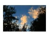 Название: На закате... Фотоальбом: 2012 Брусника на Чамге Категория: Природа Фотограф: vikirin  Время съемки/редактирования: 2012:09:15 19:57:32 Фотокамера: Canon - Canon EOS Kiss X3 Диафрагма: f/10.0 Выдержка: 1/200 Фокусное расстояние: 55/1    Просмотров: 1824 Комментариев: 0