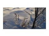 Однажды морозным утром Фотограф: vikirin  Просмотров: 1259 Комментариев: 0