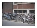 Название: стоянка 2 Фотоальбом: Италия Бользано Велодорожки Категория: Спорт  Просмотров: 791 Комментариев: 0