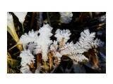 Название: IMG_6309 Фотоальбом: Даги зимние Категория: Природа Фотограф: vikirin  Время съемки/редактирования: 2019:03:10 10:14:01 Фотокамера: Canon - Canon EOS Kiss X3 Диафрагма: f/11.0 Выдержка: 1/1250 Фокусное расстояние: 250/1    Просмотров: 687 Комментариев: 0
