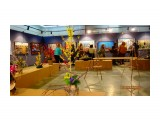 """Выставка """"Хонф -весна по-нивхски""""  DSC00127   Просмотров: 128  Комментариев: 0"""