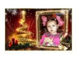 Детство Фотограф: gadzila Скоро скоро Новый Год!  Просмотров: 1896 Комментариев: 0