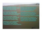 Шагаю по при брежной полосе..  Просмотров: 1427 Комментариев: