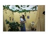 Благовещенск.На выставке бабочек Фотограф: vikirin  Просмотров: 1517 Комментариев: 0