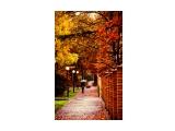 N08_9323_color-1-Old-film-Yellow-shift_w800  Просмотров: 1209 Комментариев: 2