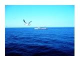 Морские дали   Фотограф: 7388PetVladVik  Просмотров: 5714 Комментариев: 0