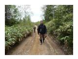 Хоть высота и небольшая, но явно подустали! Фотограф: viktorb о. Сахалин, Яблоневый перевал!  Просмотров: 918 Комментариев: 0