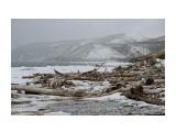 После шторма. Татарский пролив. Фотограф: 7388PetVladVik  Просмотров: 1740 Комментариев: 0
