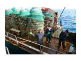 А у нас воооот такая рыба ;-))     Фотограф: 7388PetVladVik  Просмотров: 5906 Комментариев: 2