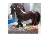 лошадь на заказ (полностью ручная работа) (2)  Просмотров: 3137 Комментариев: 0