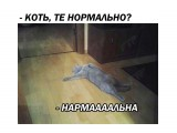 екнен  Просмотров: 94 Комментариев: