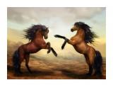 horses-2904536__480