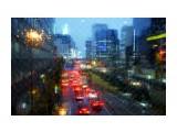 реки/ color 1 Фотограф: marka  Просмотров: 535 Комментариев: 0