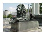 Лев Прит.30:30 лев, силач между зверями,  не посторонится ни перед кем   Просмотров: 1978 Комментариев: