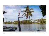 Название: IMG_0423 Фотоальбом: Шри-Ланка Категория: Разное  Просмотров: 308 Комментариев: 0