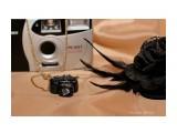 подвеска Фотограф: Алина Бойко мини фотоаппарат 3 и 2,5см. возможен повтор,полимерная глина  Просмотров: 1325 Комментариев: 0