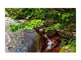 творения Баранского Фотограф: © marka /печать больших фотографий,создание слайд-шоу на DVD/  Просмотров: 1155 Комментариев: 3