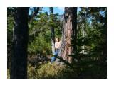 У большого дерева.. Фотограф: vikirin  Просмотров: 1726 Комментариев: 0