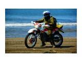 DSC09020_новый размер Фотограф: В.Дейкин  Просмотров: 683 Комментариев: 1