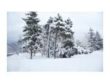 Название: _DSC4190 Фотоальбом: Зима... Категория: Пейзаж Фотограф: VictorV  Время съемки/редактирования: 2020:03:21 19:04:48 Фотокамера: SONY - DSLR-A900 Диафрагма: f/5.6 Выдержка: 1/1600 Фокусное расстояние: 280/10    Просмотров: 106 Комментариев: 0