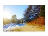 Смена осени на зиму Фотограф: В.Дейкин  Просмотров: 621 Комментариев: 1