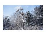 Название: _DSC0122 Фотоальбом: Зима... Категория: Пейзаж Фотограф: VictorV  Время съемки/редактирования: 2018:12:12 22:32:15 Фотокамера: SONY - DSLR-A900 Диафрагма: f/4.0 Выдержка: 1/2000 Фокусное расстояние: 240/10    Просмотров: 220 Комментариев: 0