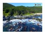 У реки Анна Фотограф: В.Дейкин  Просмотров: 1046 Комментариев: 3