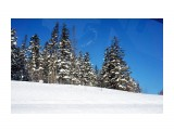 Перевал на Александровск Фотограф: vikirin  Просмотров: 484 Комментариев: 0