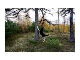 DSC03807 Фотограф: vikirin  Просмотров: 455 Комментариев: 0