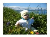 Название: Первый выход в траву Фотоальбом: Детки Категория: Дети Фотограф: uchilca  Просмотров: 1013 Комментариев: 0