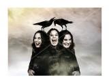Ozzy Osbourne Фотограф: © marka -на фотобумаге -на постерной бумаге -на самоклейке  Просмотров: 253 Комментариев: 0