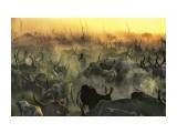 Название: Impresionantes-imágenes-de-una-tribu-de-Sudán-27 Фотоальбом: Разное Категория: Разное  Время съемки/редактирования: 2014:02:27 08:40:05    Просмотров: 27 Комментариев: 0