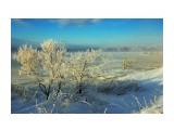DSC02381_новый размер Фотограф: В.Дейкин  Просмотров: 1168 Комментариев: 1