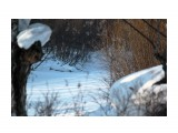 Там речка вдали.. Фотограф: vikirin  Просмотров: 2351 Комментариев: 0
