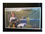 Название: Фото2736 Фотоальбом: художник Попович Н.А. Г.Владивосток Категория: Графика, живопись  Фотокамера: Nokia - 5130c-2    Просмотров: 299 Комментариев: 0