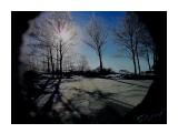 Деревья Фотограф: alexei1903  Просмотров: 1465 Комментариев: 0
