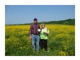 Начало пути, все в цветах! Фотограф: viktorb окр. Южно-Сахалинска!  Просмотров: 716 Комментариев: 0