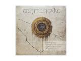 №1 | Whitesnake 1997 Whitesnake | 60x60 Фотограф: © marka возможны другие размеры  Просмотров: 205 Комментариев: 0