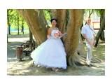 Свадьба Фотограф: gadzila  Просмотров: 662 Комментариев: 0